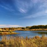 Искусственный водоем на территории заказника «Чулпан»